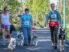 2017 Doggie Mile 15