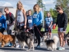 2017 Doggie Mile 2