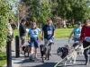 2017 Doggie Mile 7